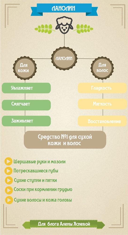 Инфографика про ланолин